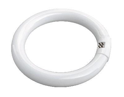 MTS Belarus Bremsband 56mm // 85-4202100-01 für Zapfwelle Zapfwellengetriebe
