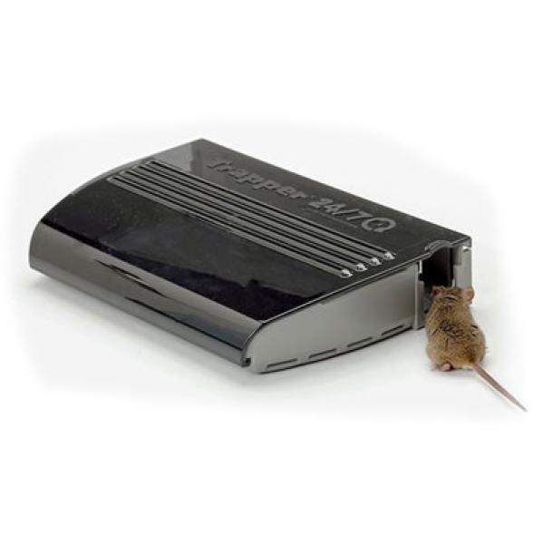 insektenvernichter g nstig kaufen gro e auswahl lebendfalle maus trapper 24 7. Black Bedroom Furniture Sets. Home Design Ideas